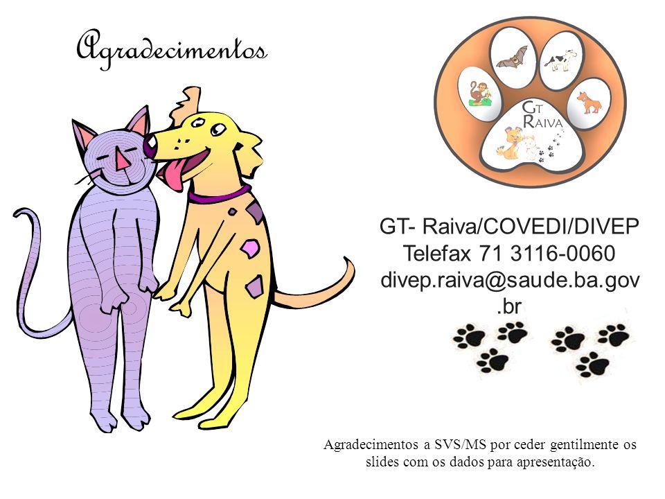 GT- Raiva/COVEDI/DIVEP