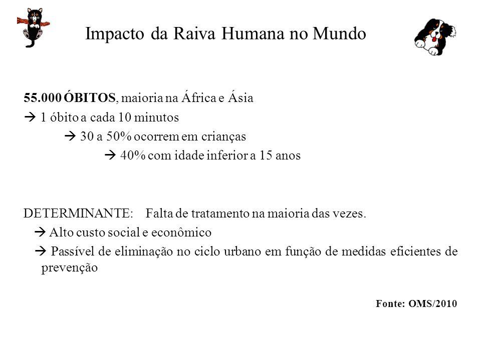 Impacto da Raiva Humana no Mundo