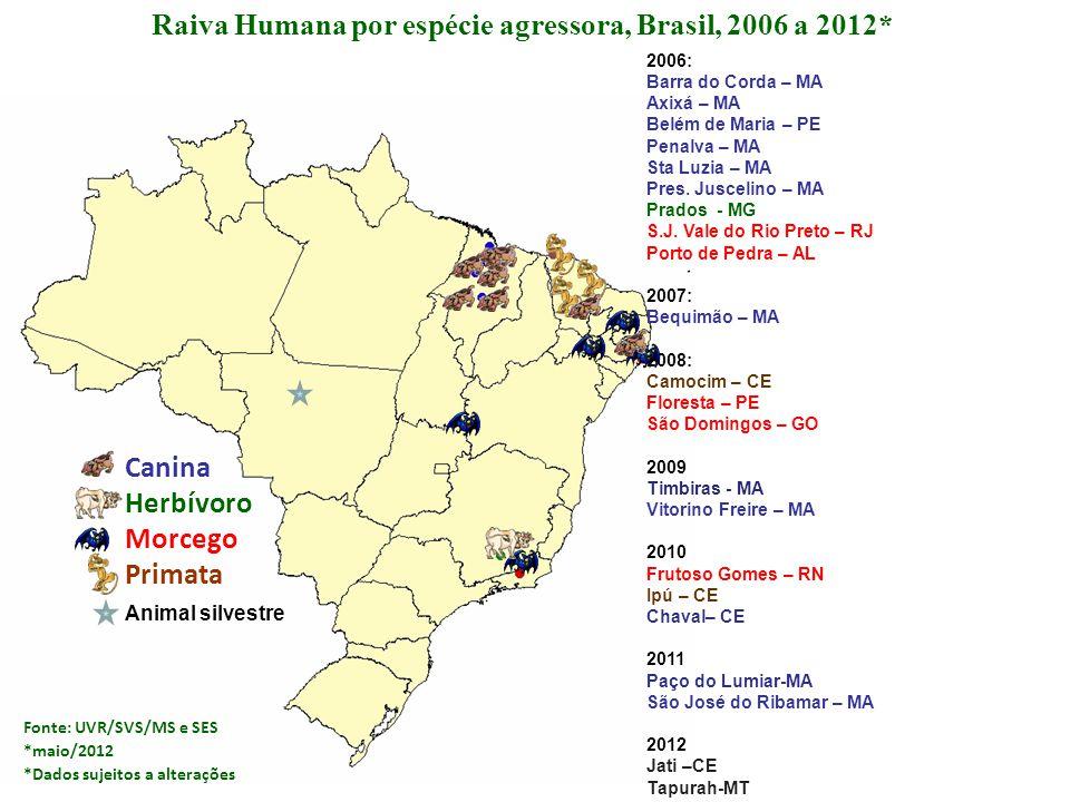 Raiva Humana por espécie agressora, Brasil, 2006 a 2012*