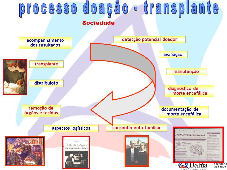 processo doação - transplante