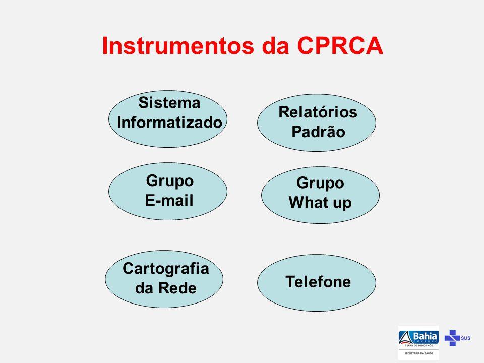 Instrumentos da CPRCA Sistema Informatizado Relatórios Padrão Grupo