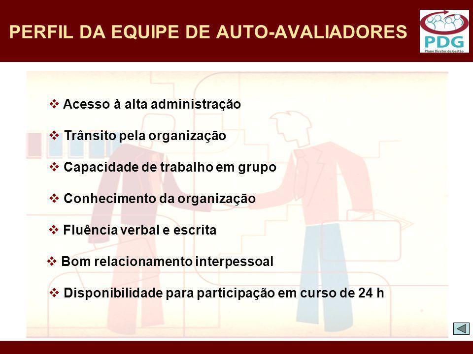PERFIL DA EQUIPE DE AUTO-AVALIADORES