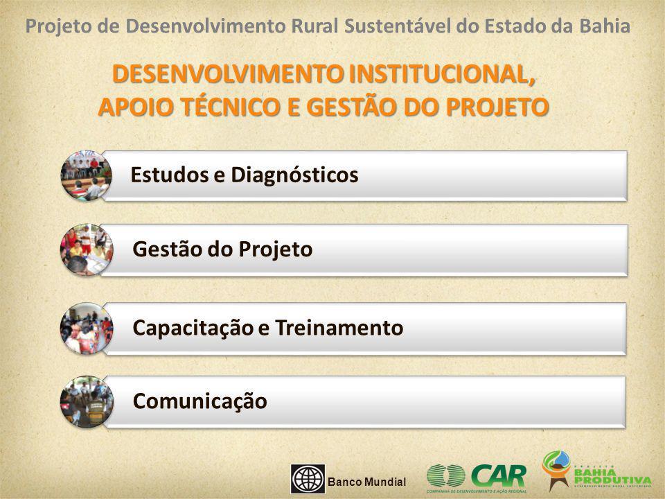 DESENVOLVIMENTO INSTITUCIONAL, APOIO TÉCNICO E GESTÃO DO PROJETO