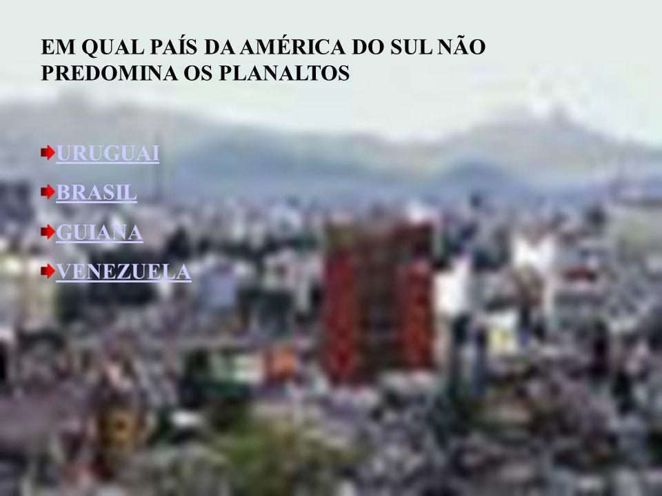 EM QUAL PAÍS DA AMÉRICA DO SUL NÃO PREDOMINA OS PLANALTOS