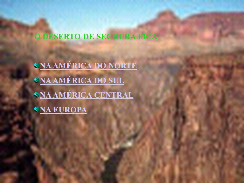O DESERTO DE SECHURA FICA