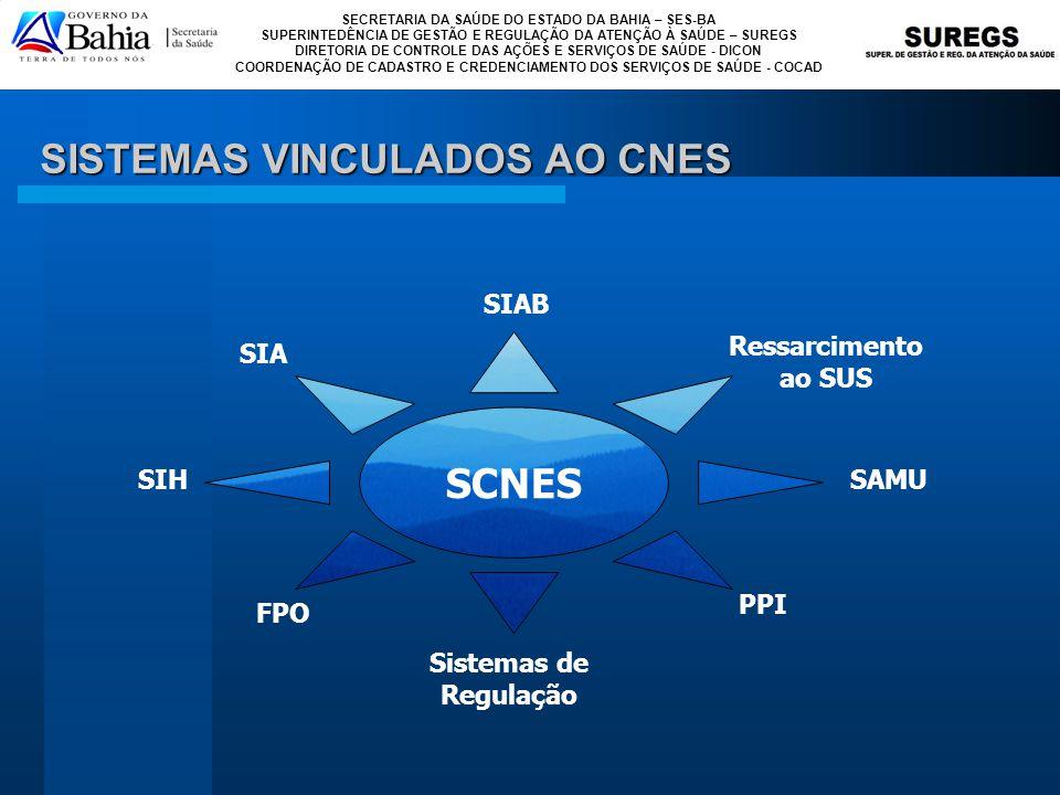 SISTEMAS VINCULADOS AO CNES