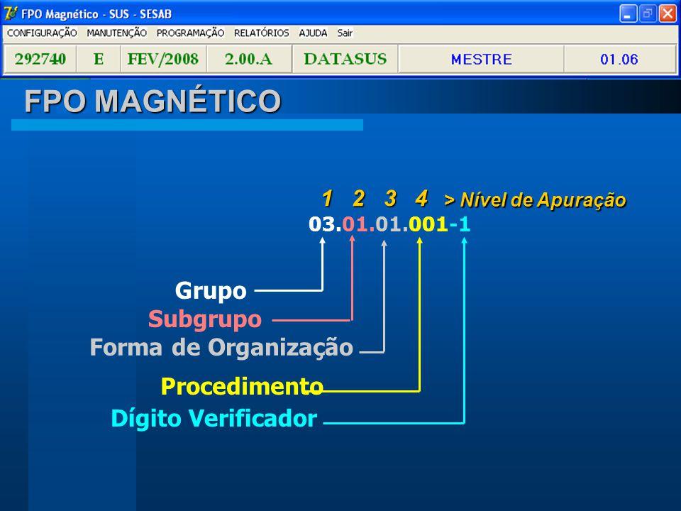 FPO MAGNÉTICO Grupo Subgrupo Forma de Organização Procedimento