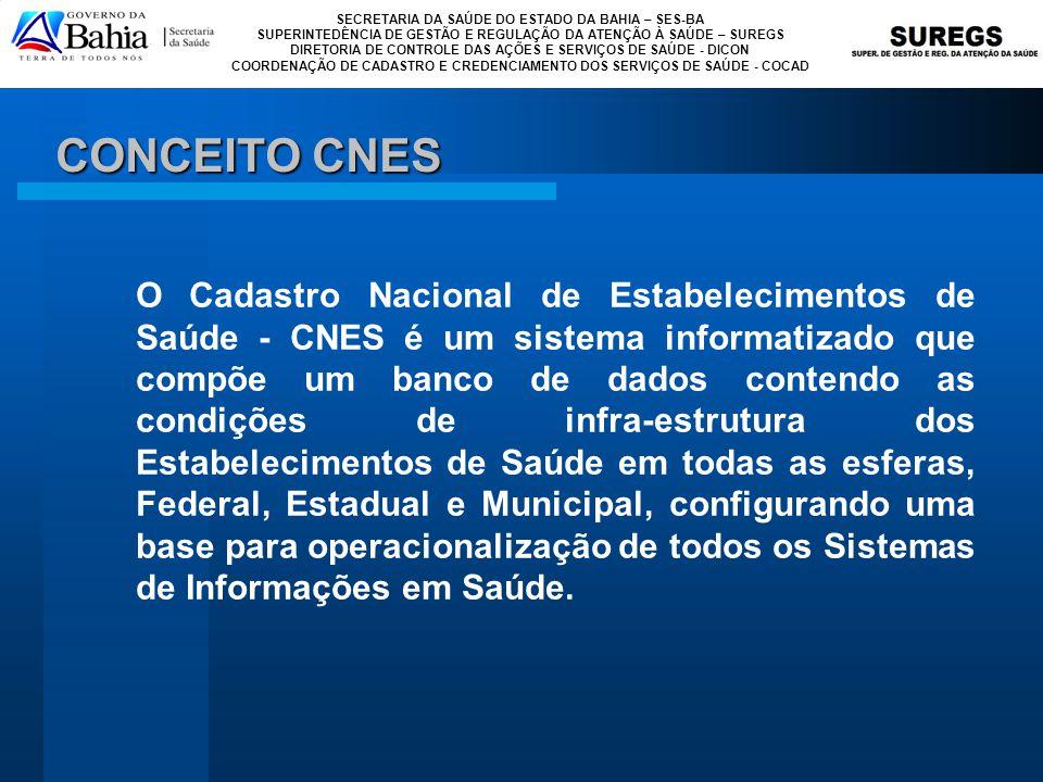 CONCEITO CNES