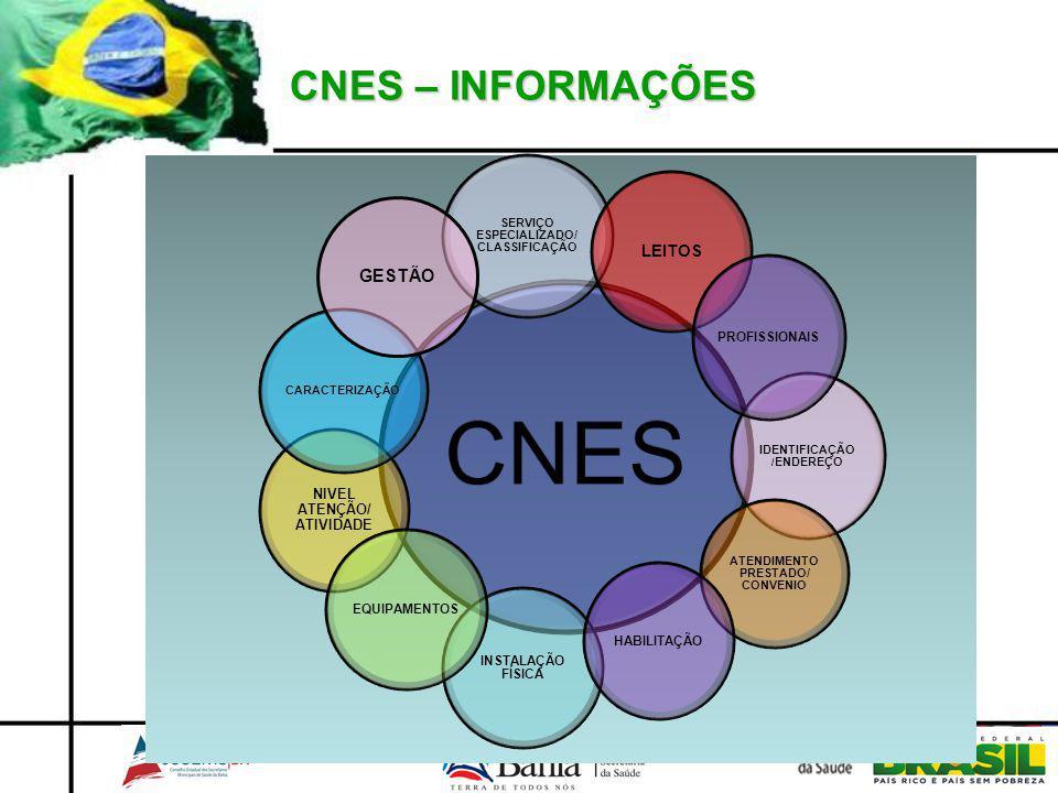 CNES – INFORMAÇÕES GESTÃO LEITOS NIVEL ATENÇÃO/ ATIVIDADE