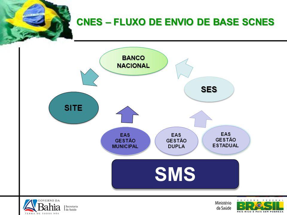 SMS CNES – FLUXO DE ENVIO DE BASE SCNES SES SITE BANCO NACIONAL
