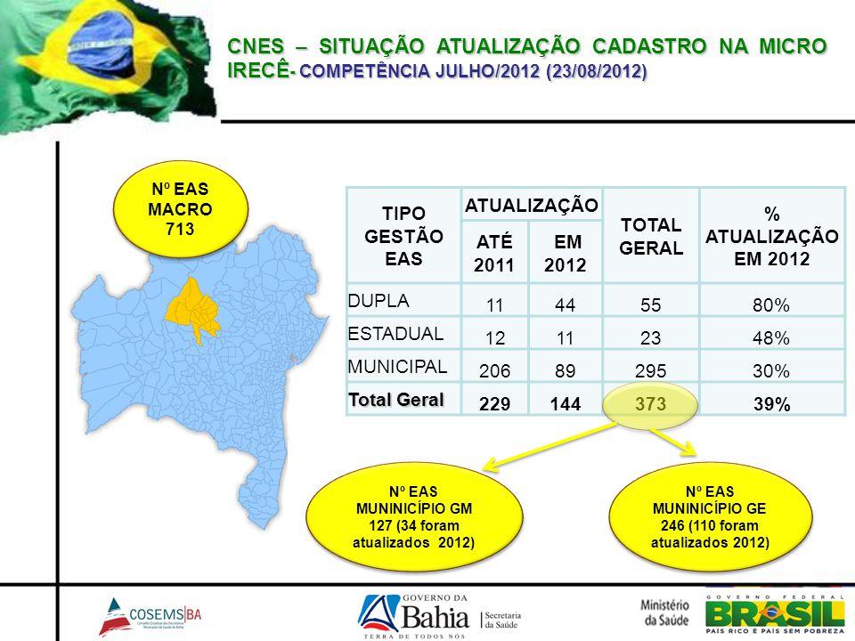 CNES – SITUAÇÃO ATUALIZAÇÃO CADASTRO NA MICRO IRECÊ- COMPETÊNCIA JULHO/2012 (23/08/2012)