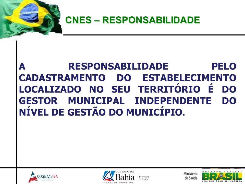 CNES – RESPONSABILIDADE