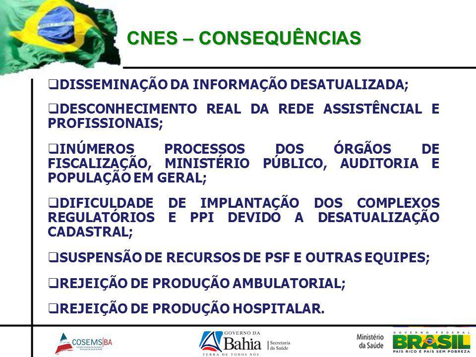 CNES – CONSEQUÊNCIAS DISSEMINAÇÃO DA INFORMAÇÃO DESATUALIZADA;