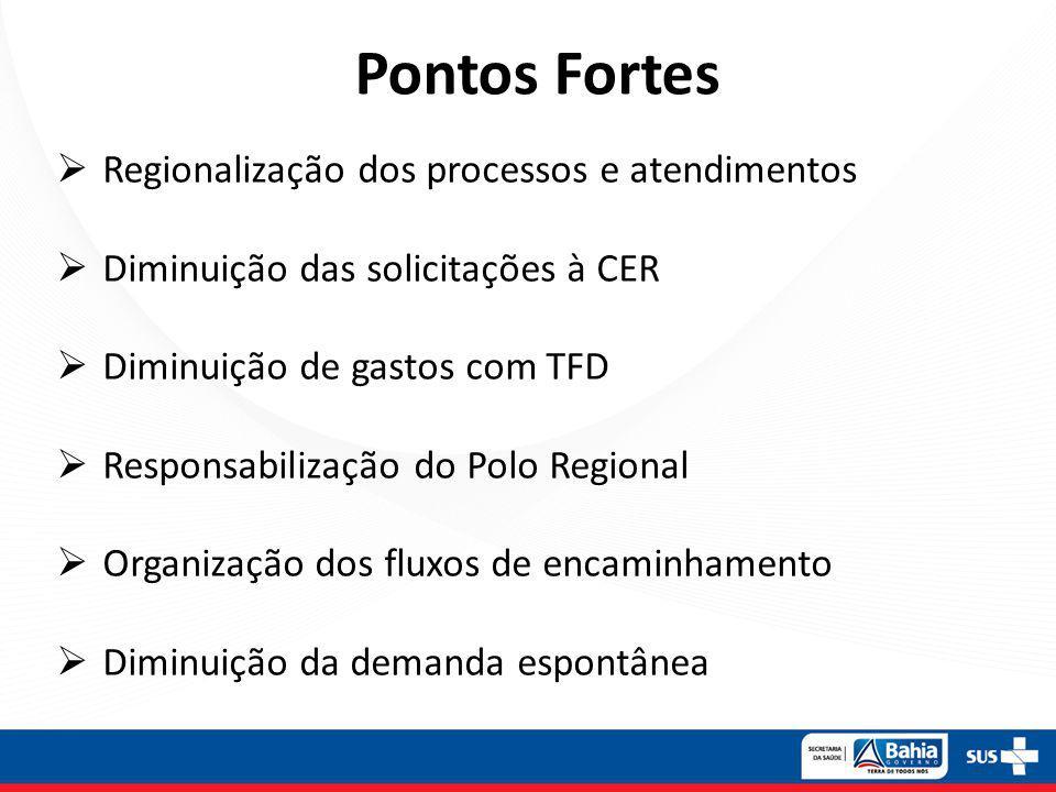 Pontos Fortes Regionalização dos processos e atendimentos