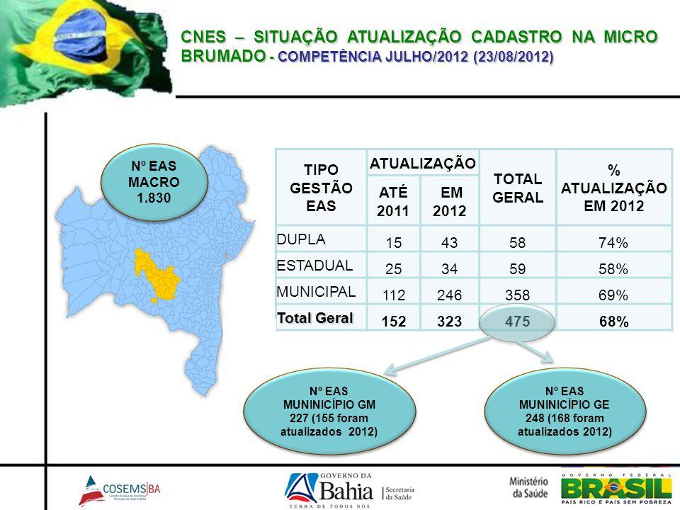 CNES – SITUAÇÃO ATUALIZAÇÃO CADASTRO NA MICRO BRUMADO - COMPETÊNCIA JULHO/2012 (23/08/2012)