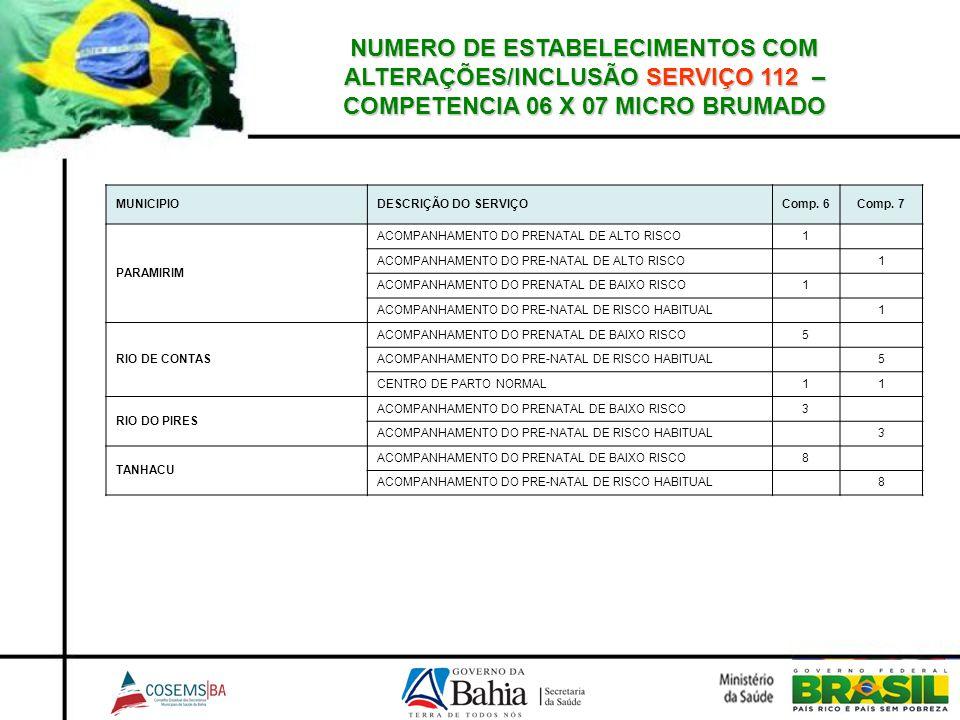 NUMERO DE ESTABELECIMENTOS COM ALTERAÇÕES/INCLUSÃO SERVIÇO 112 – COMPETENCIA 06 X 07 MICRO BRUMADO