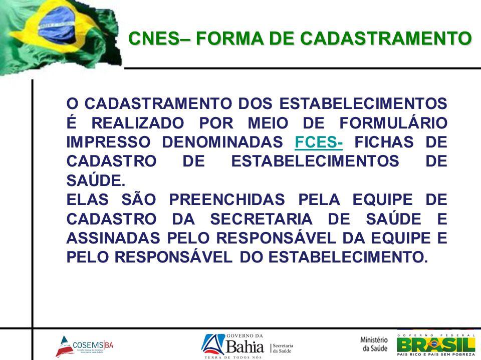 CNES– FORMA DE CADASTRAMENTO