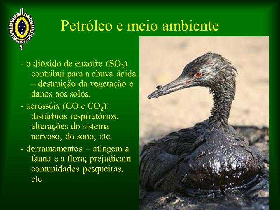 Petróleo e meio ambiente