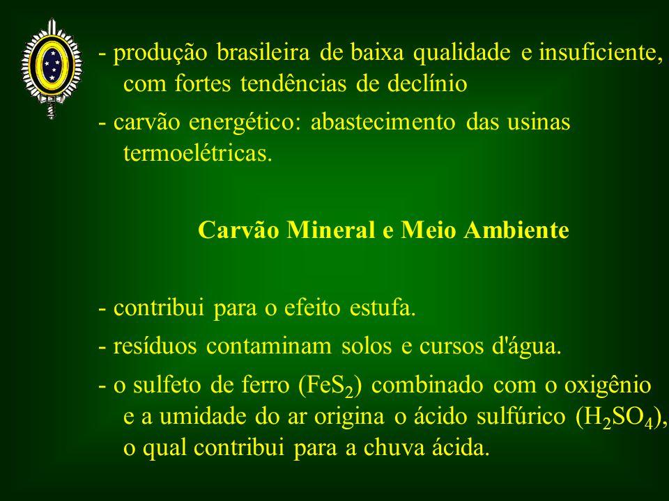 Carvão Mineral e Meio Ambiente