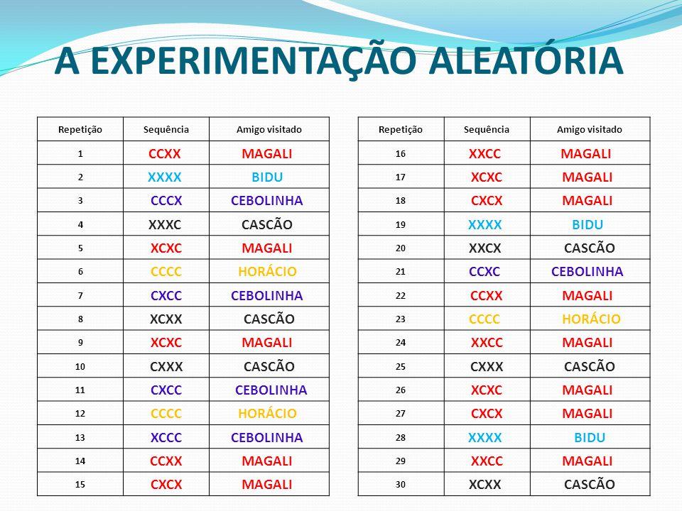 A EXPERIMENTAÇÃO ALEATÓRIA