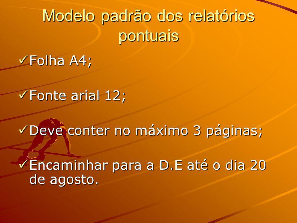 Modelo padrão dos relatórios pontuais