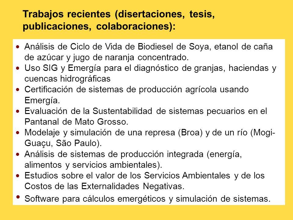 Trabajos recientes (disertaciones, tesis, publicaciones, colaboraciones):