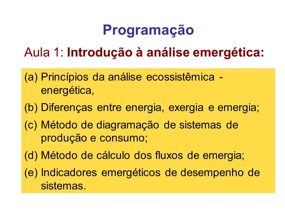 Programação Aula 1: Introdução à análise emergética: