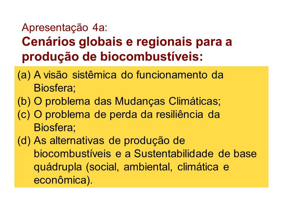 Cenários globais e regionais para a produção de biocombustíveis: