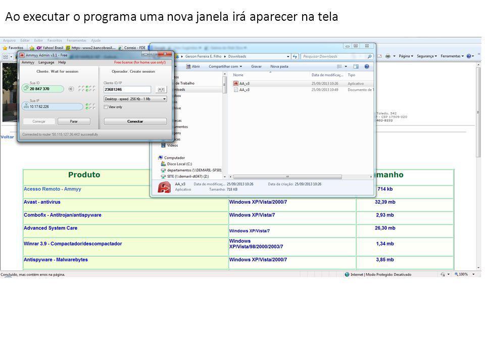 Ao executar o programa uma nova janela irá aparecer na tela