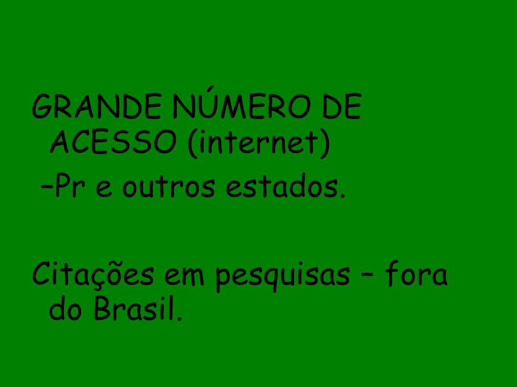 GRANDE NÚMERO DE ACESSO (internet)