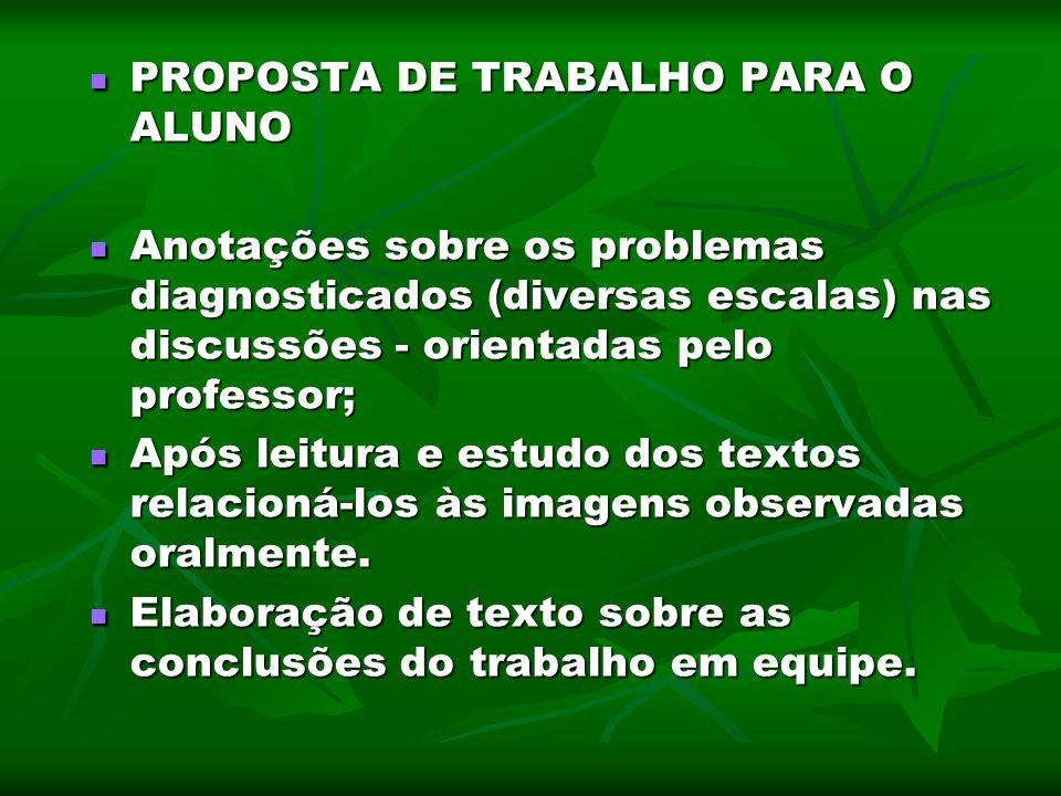 PROPOSTA DE TRABALHO PARA O ALUNO
