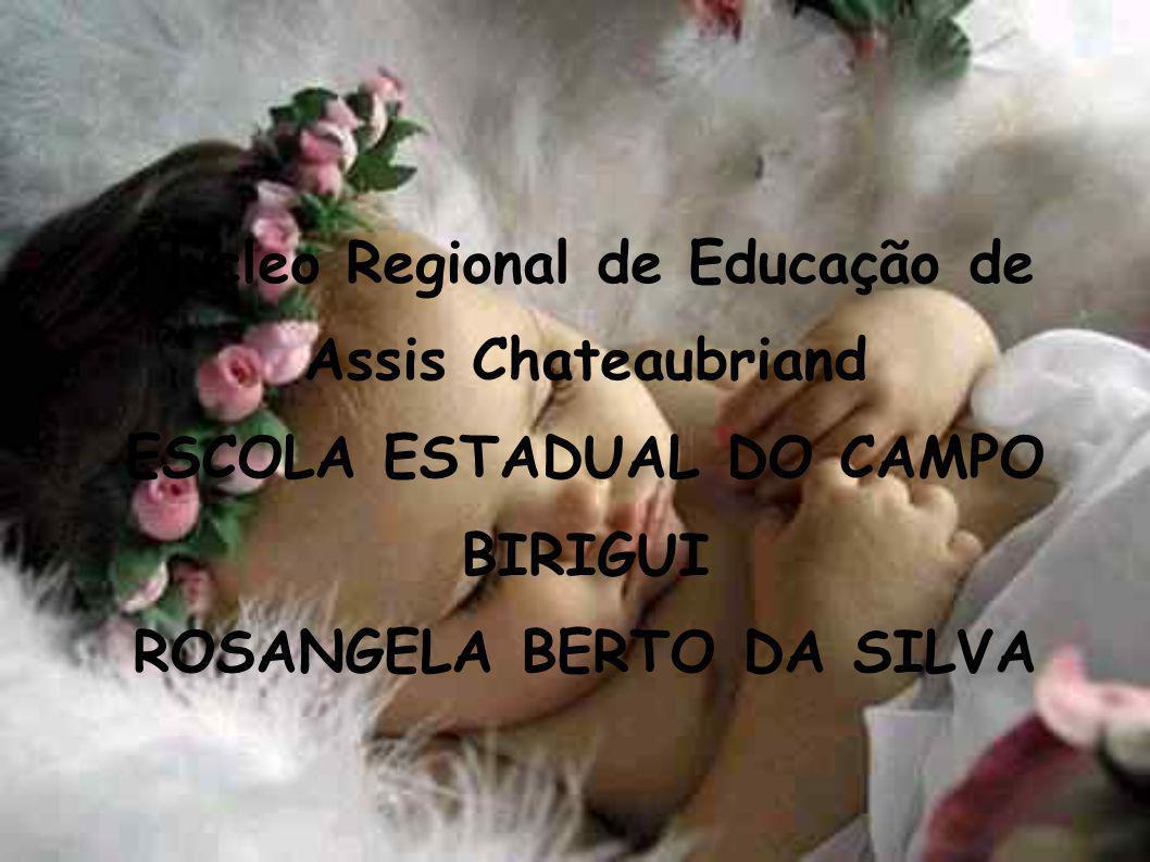 Núcleo Regional de Educação de Assis Chateaubriand