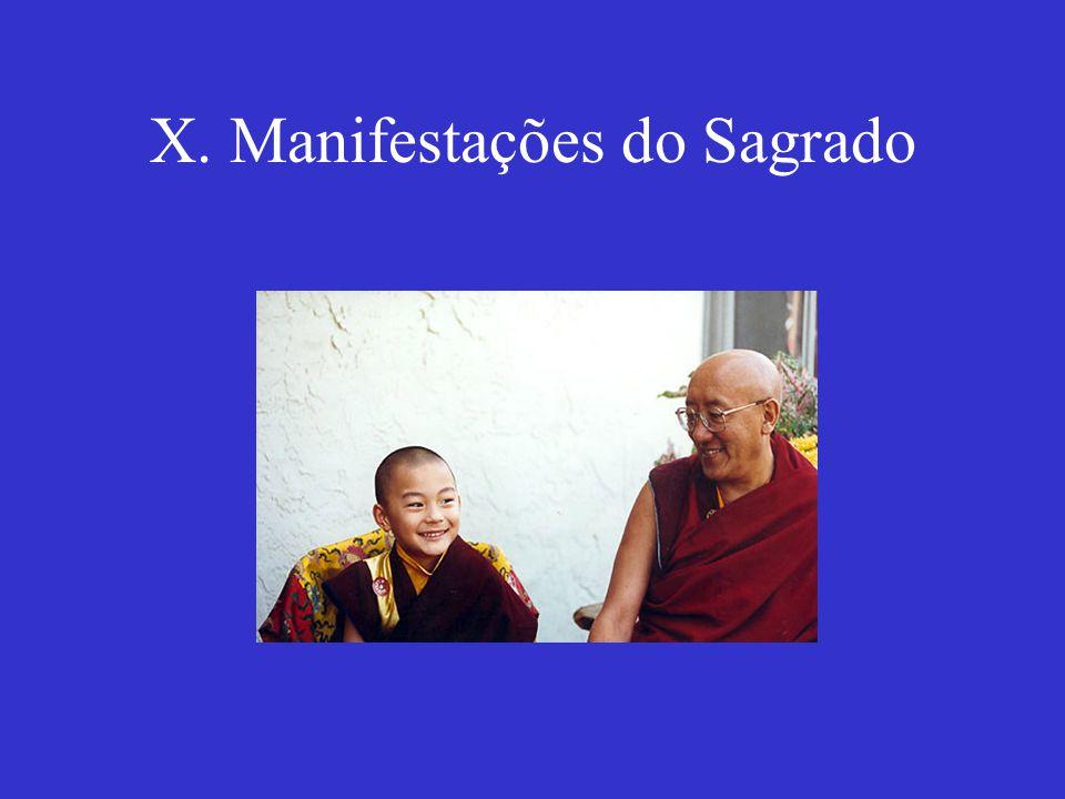 X. Manifestações do Sagrado