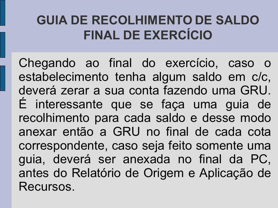 GUIA DE RECOLHIMENTO DE SALDO FINAL DE EXERCÍCIO
