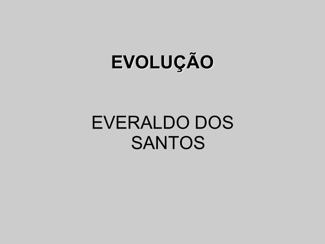EVOLUÇÃO EVERALDO DOS SANTOS