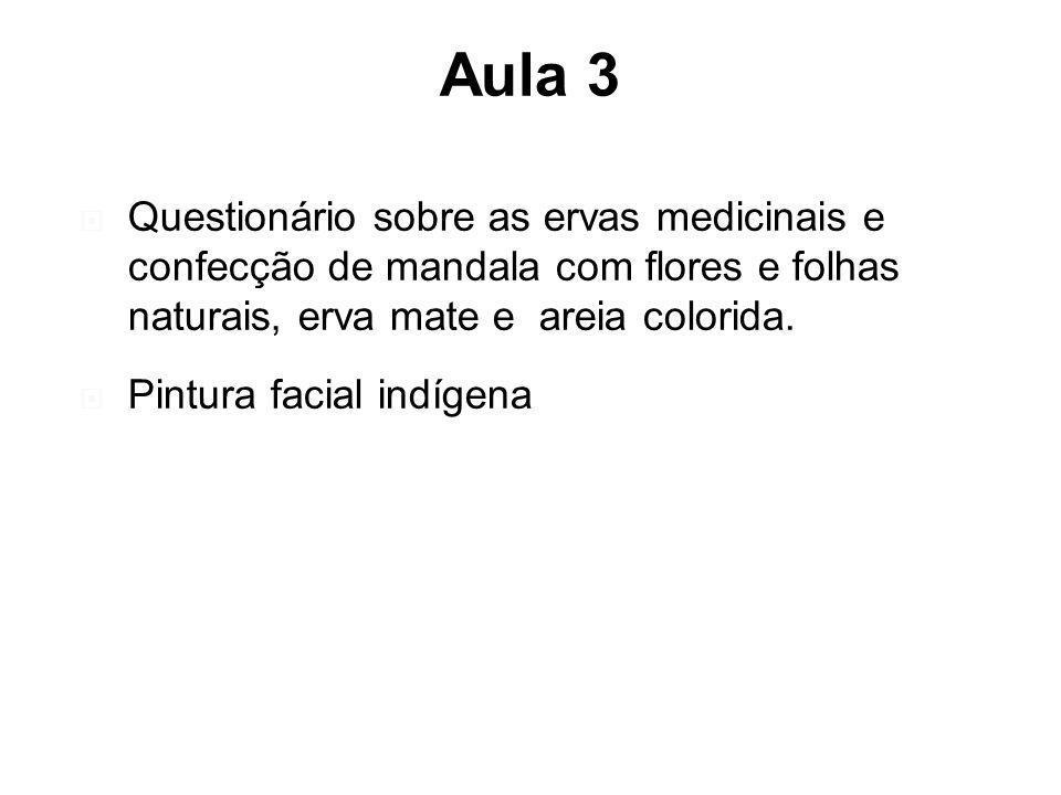 Aula 3 Questionário sobre as ervas medicinais e confecção de mandala com flores e folhas naturais, erva mate e areia colorida.