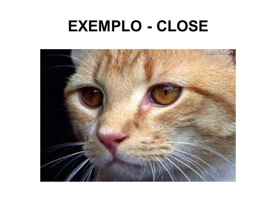 EXEMPLO - CLOSE