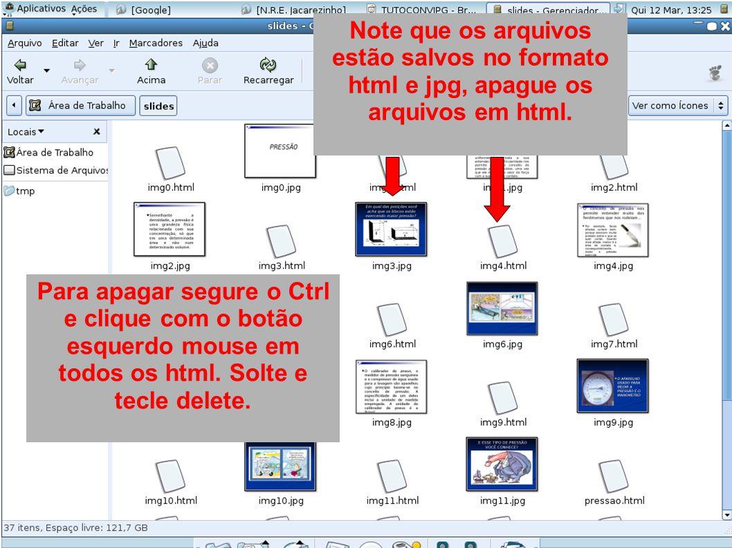 Note que os arquivos estão salvos no formato html e jpg, apague os arquivos em html.