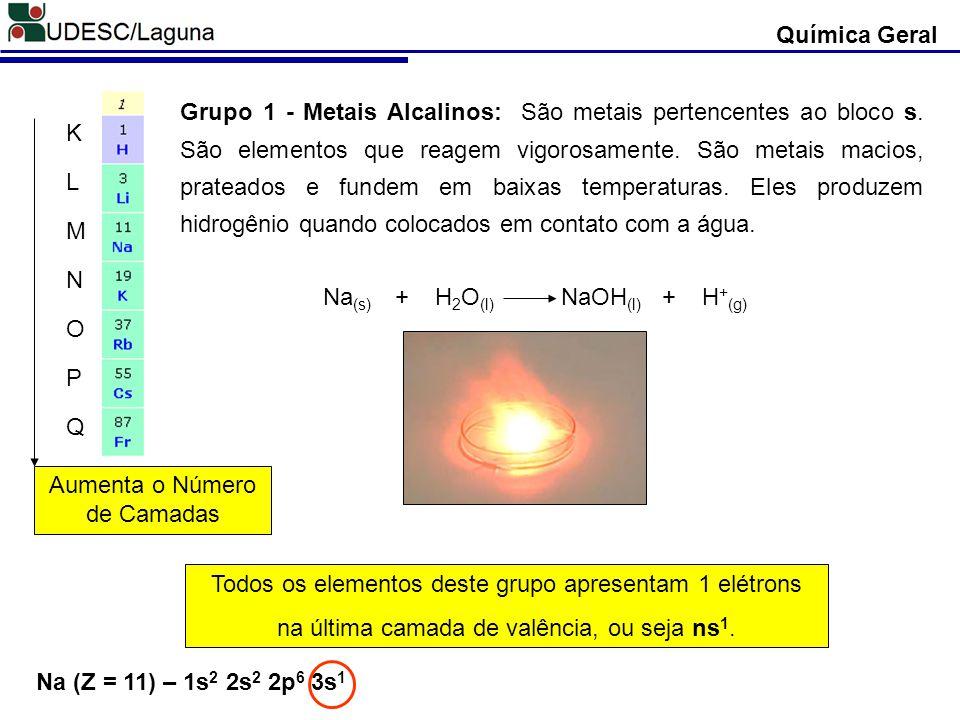 Na(s) + H2O(l) NaOH(l) + H+(g)