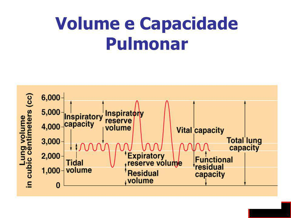 Volume e Capacidade Pulmonar