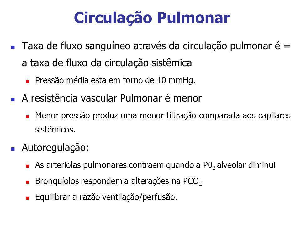 Circulação Pulmonar Taxa de fluxo sanguíneo através da circulação pulmonar é = a taxa de fluxo da circulação sistêmica.