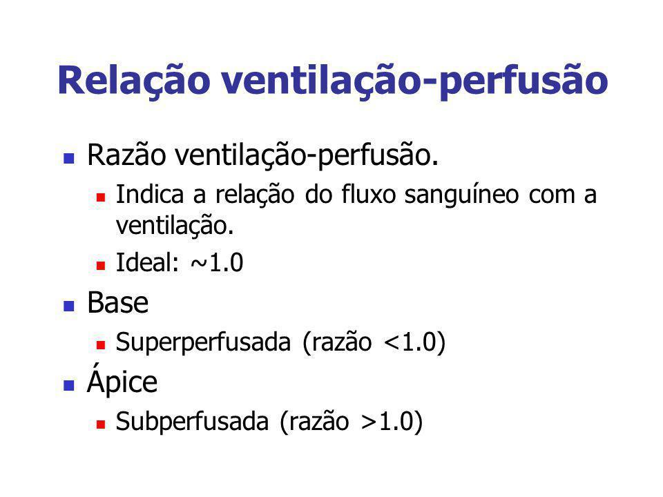 Relação ventilação-perfusão