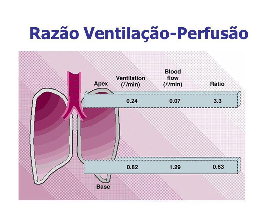 Razão Ventilação-Perfusão