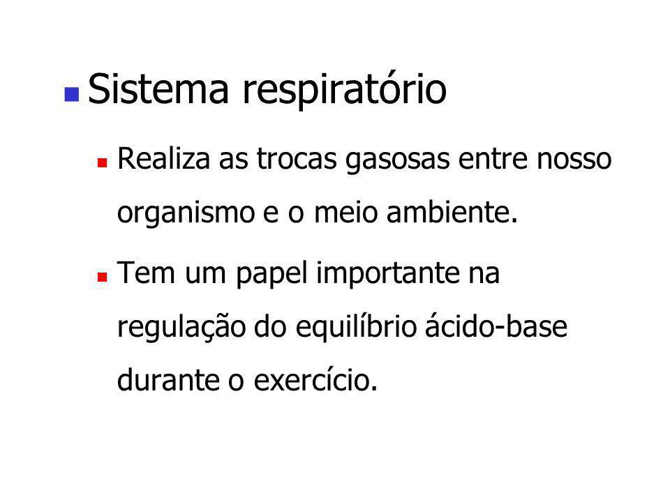 Sistema respiratório Realiza as trocas gasosas entre nosso organismo e o meio ambiente.