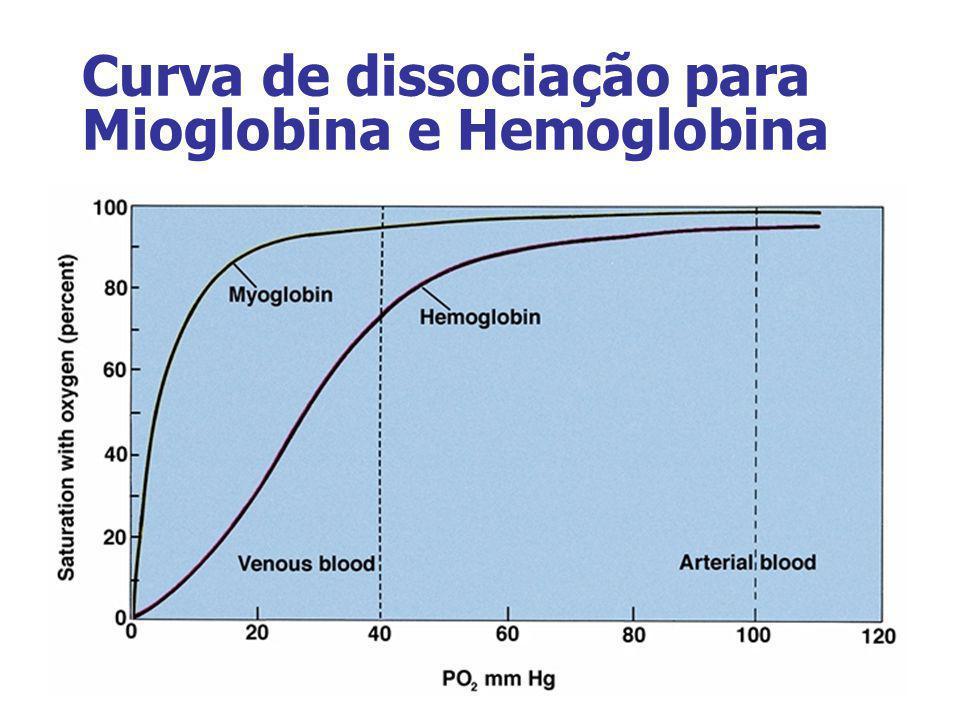 Curva de dissociação para Mioglobina e Hemoglobina