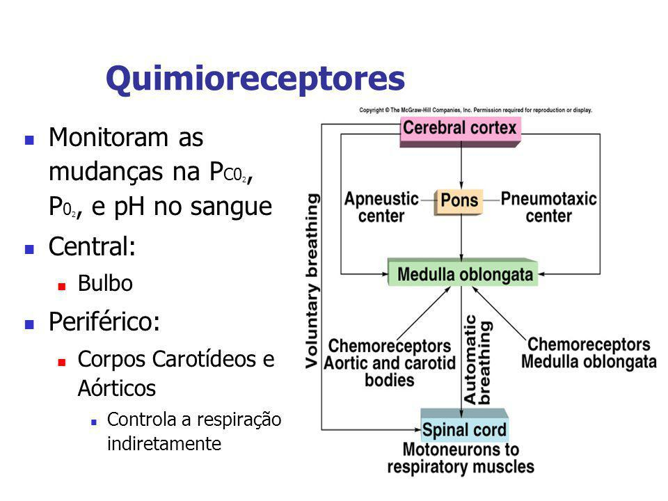 Quimioreceptores Monitoram as mudanças na PC02, P02, e pH no sangue