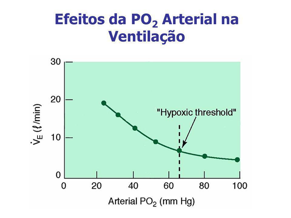 Efeitos da PO2 Arterial na Ventilação