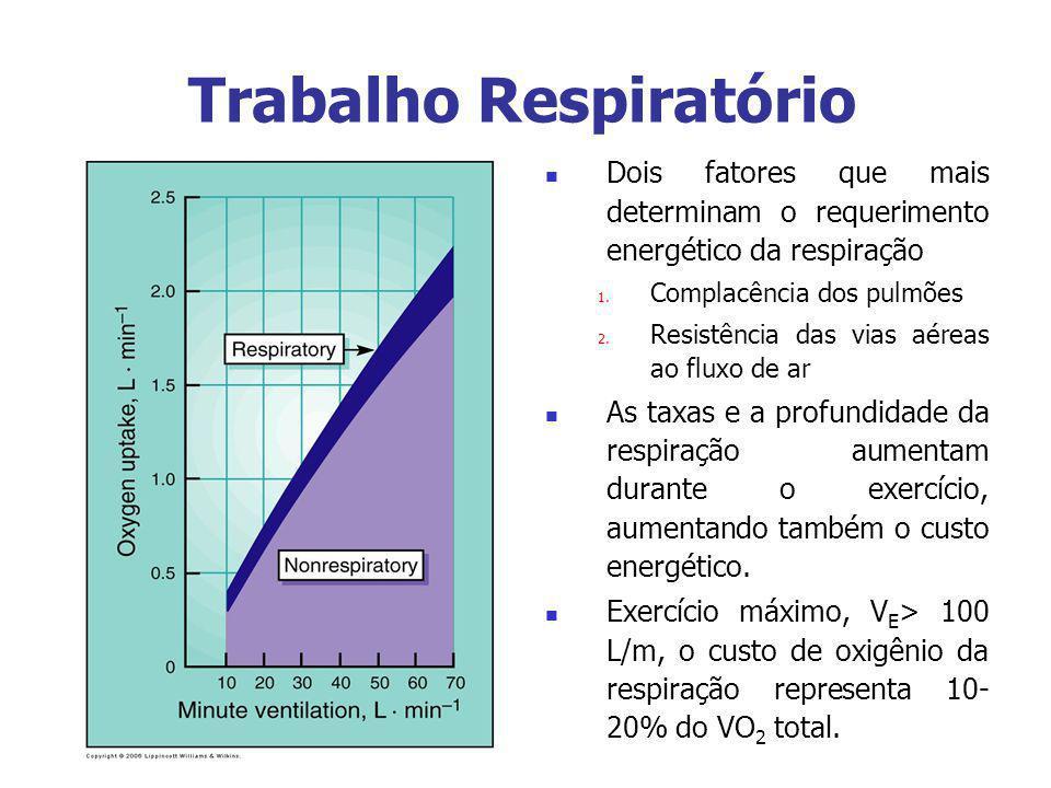Trabalho Respiratório
