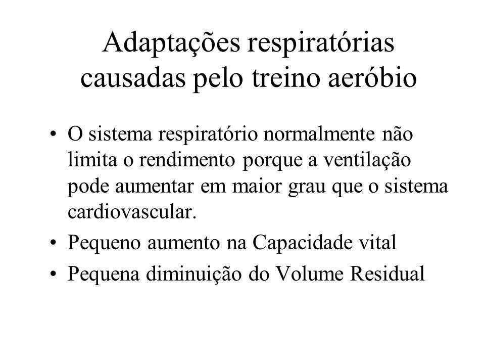 Adaptações respiratórias causadas pelo treino aeróbio