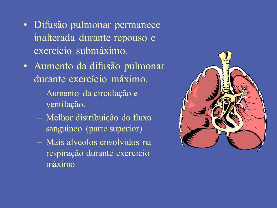 Aumento da difusão pulmonar durante exercício máximo.